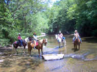 True West at Big South Fork
