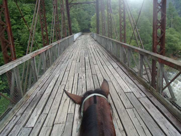 Big South Fork Trail Riding
